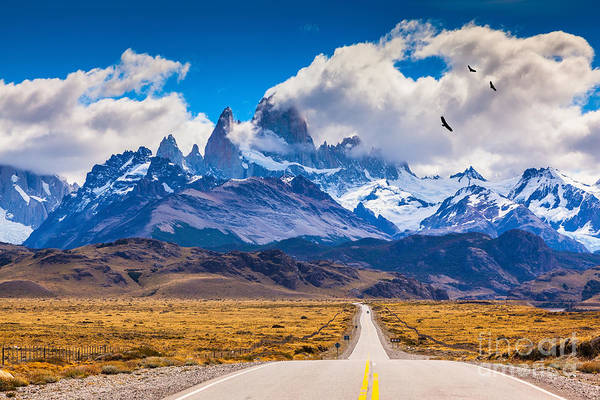 Flock Wall Art - Photograph - The Highway Crosses The Patagonia And by Kavram