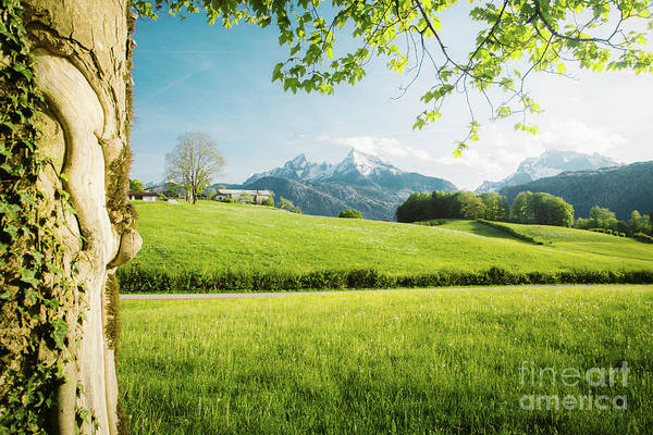 Wall Art - Photograph - The Hills Are Alive by JR Photography