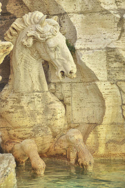 Photograph - The Horse In The Fountain  by JAMART Photography