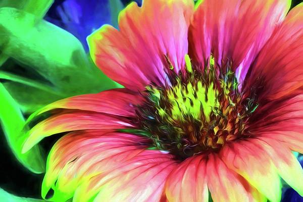 Photograph - The Indian Blanket by JC Findley