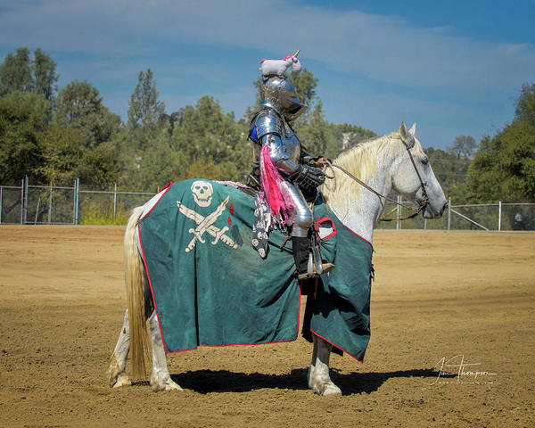 Photograph - The Knight With The Unicorn On His Helm by Jim Thompson