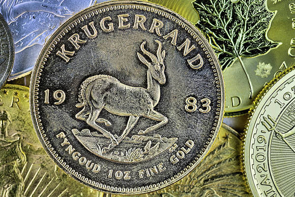 Photograph - The Krugerrand by JC Findley