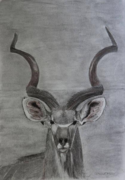 The Kudu Art Print
