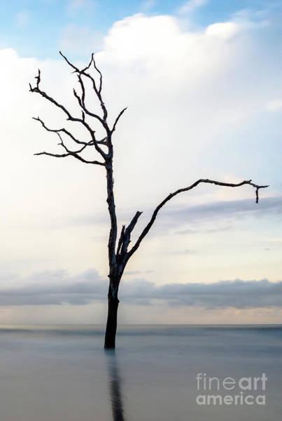 Bulls Island Photograph - Last Bastion by DiFigiano Photography