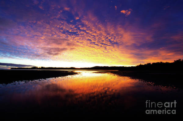 Wall Art - Photograph - The Last Sunrise Of 2018 by Bob Christopher