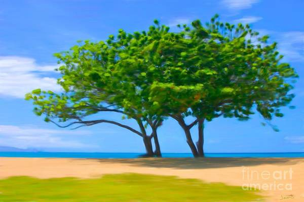 Andrew Jackson Wall Art - Painting - The Last Tree On Baldwin Beach In Maui Hawaii  by Andrew Jackson