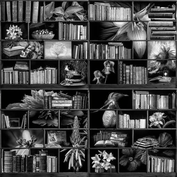 Digital Art - The Library The Flower Section In Black And White by Debra and Dave Vanderlaan
