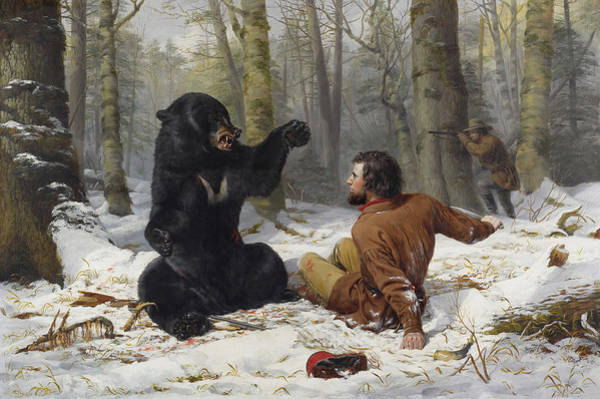 Wall Art - Painting - The Life Of A Hunter - Bear Hunting, Early Winter, 1856 by Arthur Fitzwilliam Tait