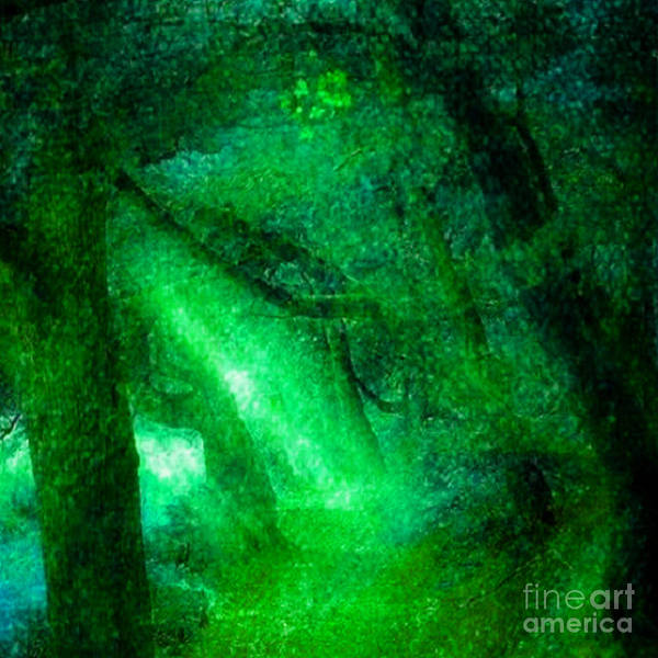 Shrub Mixed Media - The Light Will Guide You by Rod Jellison