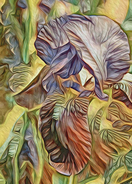 Mixed Media - The Lines Of An Iris Yellow Tone by Lynda Lehmann