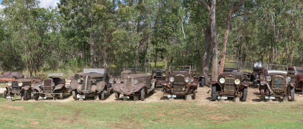 Atherton Tablelands Photograph - The Lineup by Kim Wilder Hinson