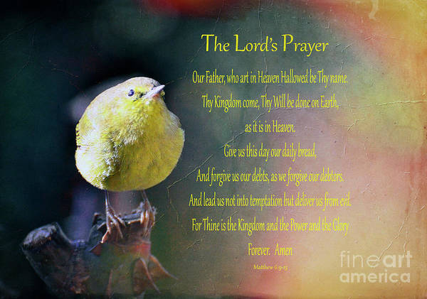 Pray For Love Wall Art - Photograph - The Lord's Prayer by Debby Pueschel