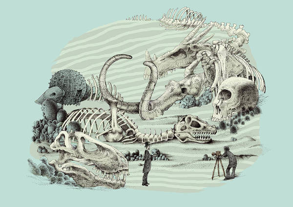 Fossil Wall Art - Drawing - The Lost Beach by Eric Fan