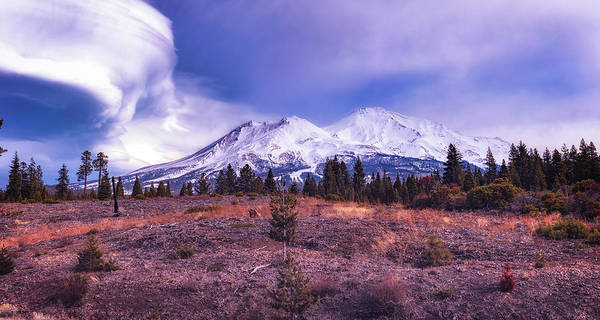 Wall Art - Photograph - The Magic Of The Mountain by Marnie Patchett