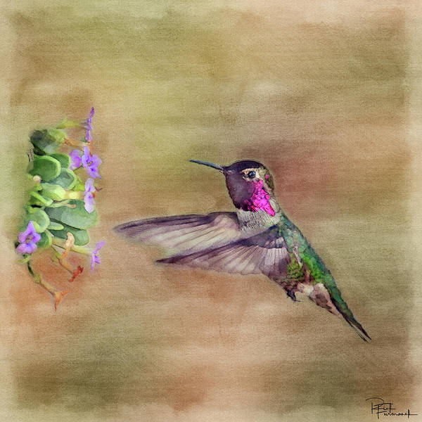 Photograph - The Maker's Handiwork In Digital Watercolor by Rick Furmanek