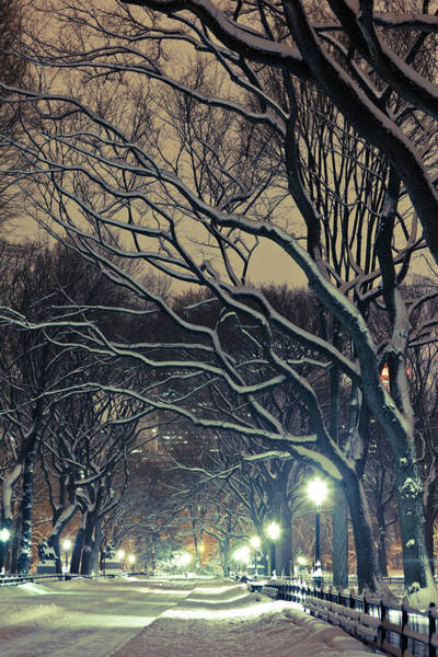 Mall Photograph - The Mall Alley In Central Park By Night by Pawel.gaul