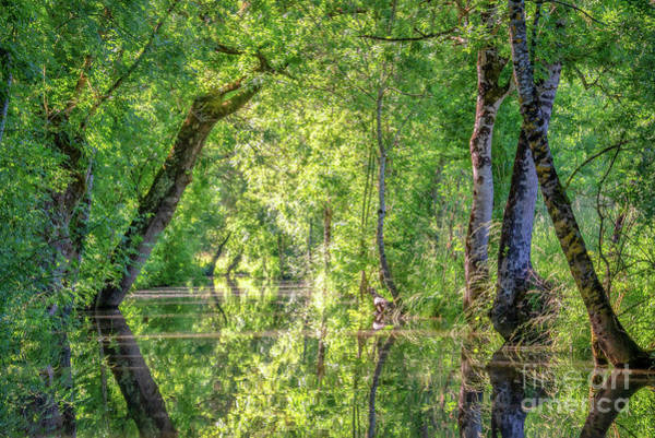 Wall Art - Photograph - The Marais Poitevin by Delphimages Photo Creations