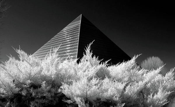 Wall Art - Photograph - The Memphis Pyramid by Amy Curtis