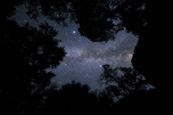 Wall Art - Photograph - The Milky Way Appears Overhead by Jeff Dai