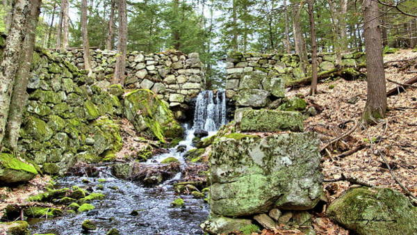 Photograph - The Mill Dam by Harry Moulton