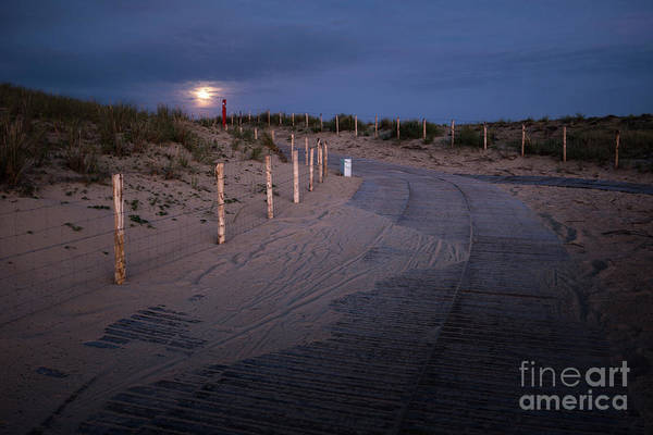 Photograph - The Moon Lights My Way by Hannes Cmarits