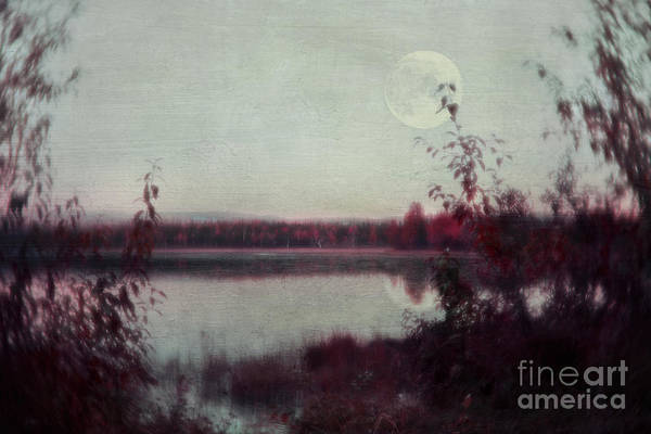 Wall Art - Photograph - The Moon You Have Forgotten by Priska Wettstein