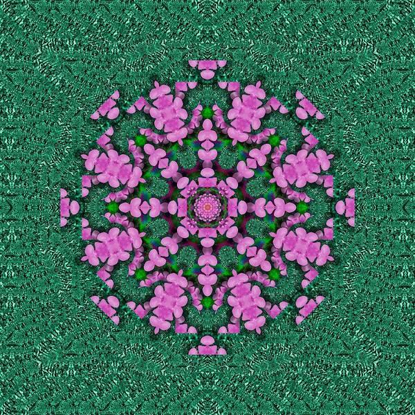 The Most Uniqe Flower Star In Ornate Glitter Art Print