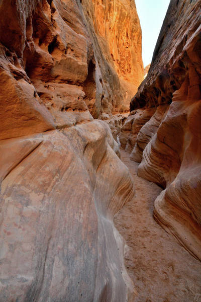 Photograph - The Narrows Of Little Wild Horse Canyon by Ray Mathis