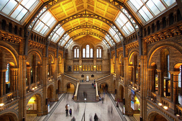 Kensington And Chelsea Photograph - The Natural History Museum, London by Jason Friend