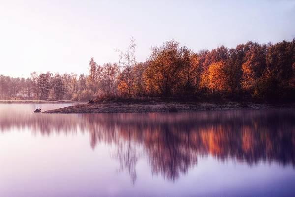 Photograph - The Nature by Jaroslav Buna