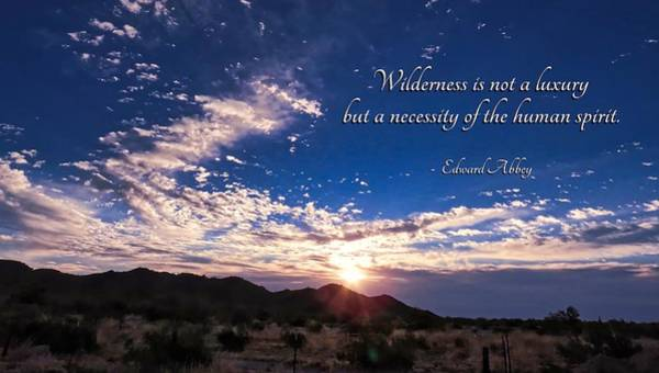 Photograph - The Necessity Of Wilderness by Judy Kennedy