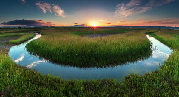 Photograph - The Necklace by Evgeni Dinev
