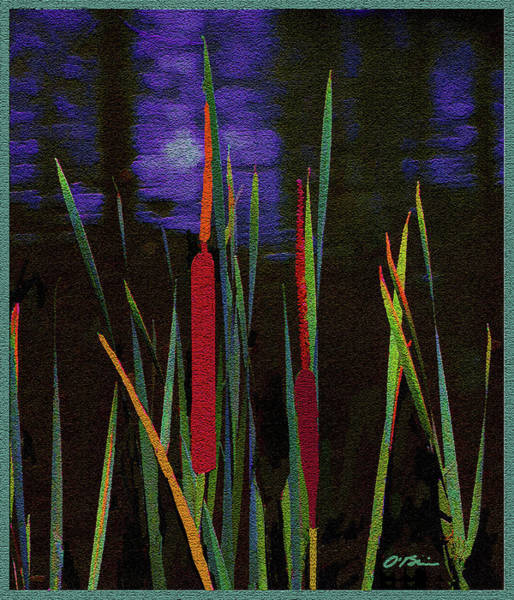 Wall Art - Mixed Media - The Night Life Of Cattails by Claudia O'Brien