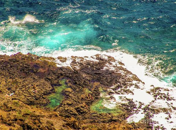 Photograph - The Ocean Pools  by D Davila