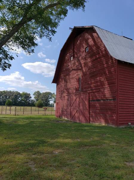Photograph - The Old Red Barn by Karen Harrison