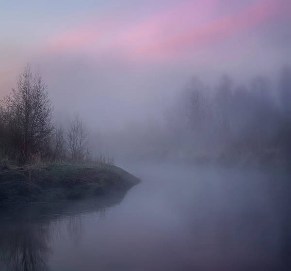 Photograph - The Old River by Dan Jurak