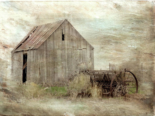 Digital Art - The Old Shed by Ramona Murdock