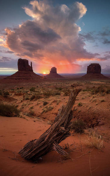 Photograph - The Original Old West / Monument Valley, Arizona  by Nicholas Parker
