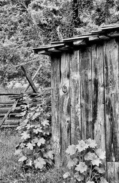 Wall Art - Photograph - The Outhouse by Paul W Faust -  Impressions of Light