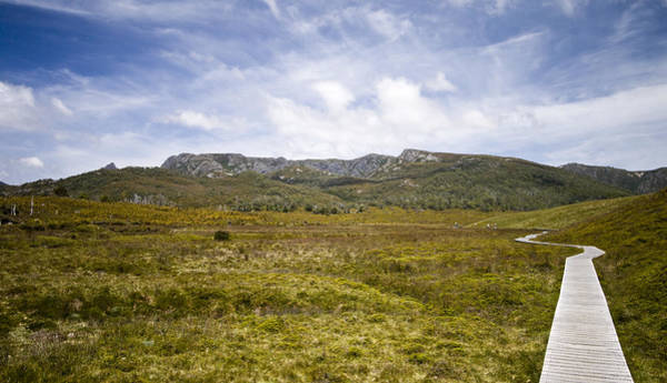 Southern Hemisphere Wall Art - Photograph - The Overland Track by Samvaltenbergs