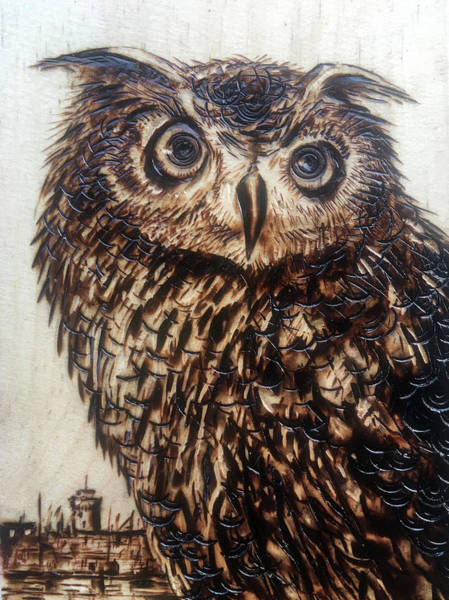 Pyrography Wall Art - Pyrography - The Owl by Franco Puliti