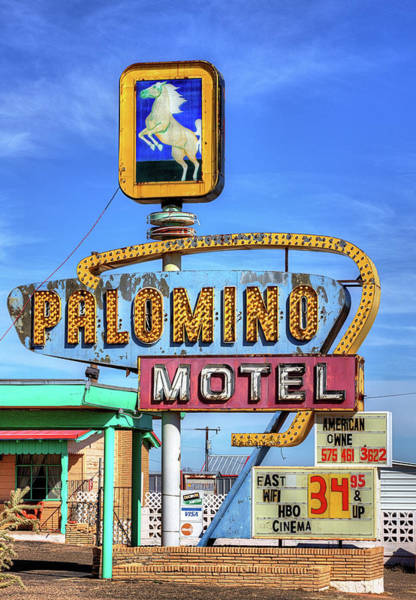 Photograph - The Palomino by JC Findley