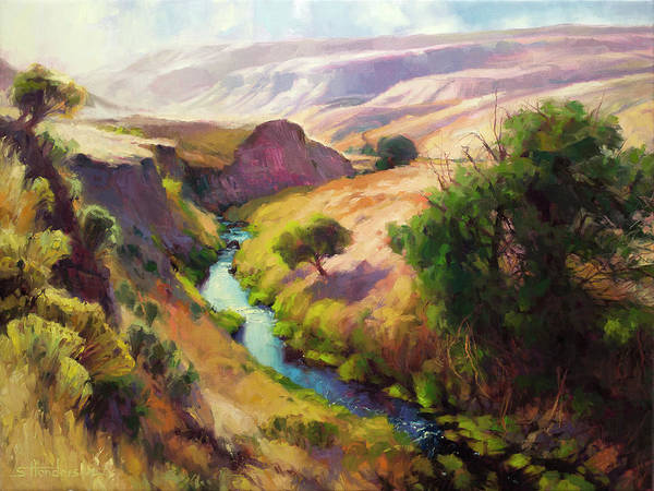 Painting - The Pataha by Steve Henderson