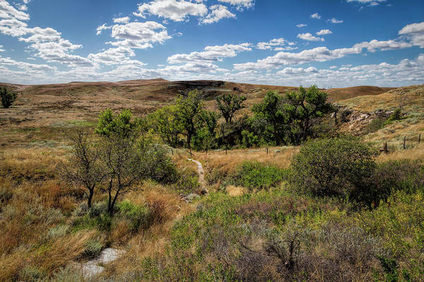 Photograph - The Path To St. Jacob's Well by Scott Bean