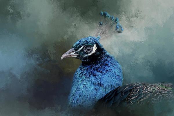 The Peacock's Crown Art Print