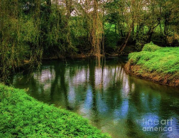 Photograph - The  Pequea Creek by Nick Zelinsky