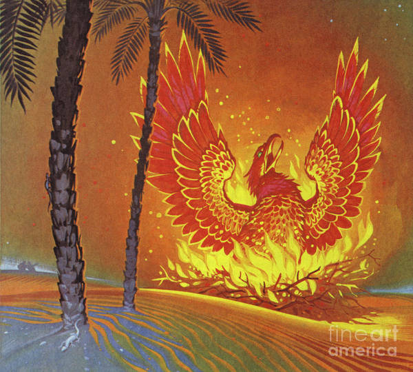 Wall Art - Painting - The Phoenix by Angus McBride