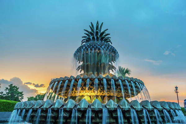Photograph - The Pineapple Fountain, At The Waterfront Park In Charleston by Alex Grichenko