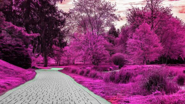 Digital Art - The Pink Rose Gardens by Jason Fink