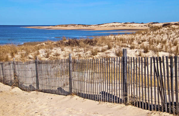 Photograph - The Point At Cape Henlopen by Carolyn Derstine